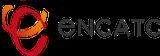 ENCATC Fellowship Award